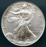 1996 Silver American Eagle - Uncirculated - Toned
