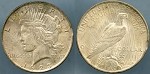 1923 Peace Dollar with Rim Clip at 2:30, Y in Liberty. Au/Unc