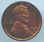 1920 D Lincoln Cent XF details cleaned