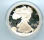 1991 Silver American Eagle Dollar Proof light scratches Obv.. and Rev.