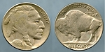 1929 D Buffalo Nickel About Uncirculated