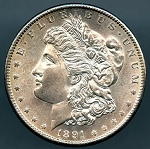 1891 S Morgan Dollar Choice B.U. MS-64