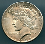 1928 Peace Dollar Choice B.U. MS-63