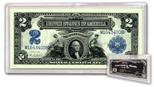 BCW Deluxe Currency Slab for Large Size Notes